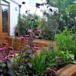 Teddington Planting