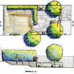 Garden Plan Teddington